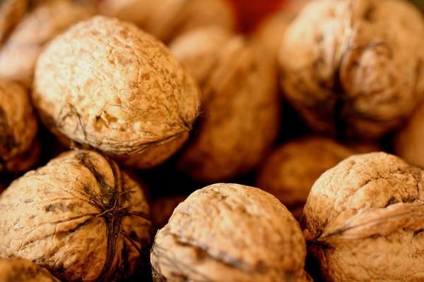 best nut food for strong bones