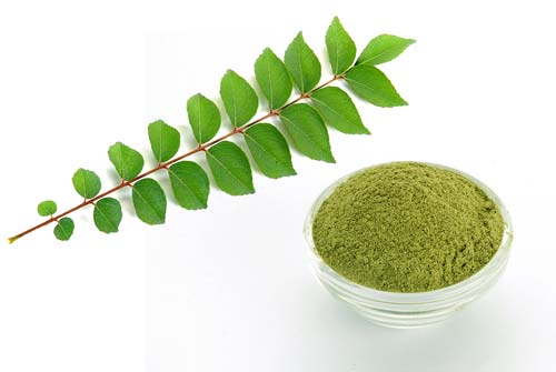 curry leaves for breast cancer
